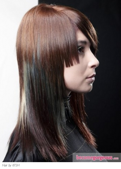 Stylish Hair Highlights