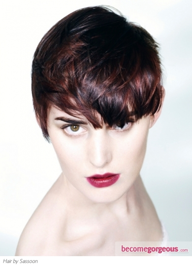 Choppy Layered Short Pixie