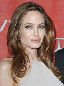 Angelina Jolie Light Brown Hair Color