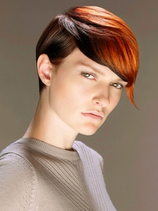 Short Hair Highlights Idea