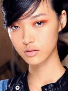 Copper Cat Eyes Makeup at Chloe