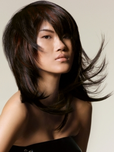 Long Sleek Layered Hair Style