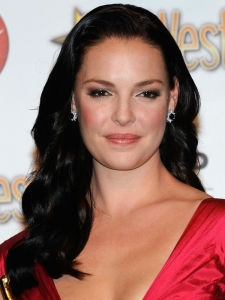 Katherine Heigl Long Brunette Hairstyle