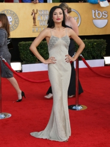 Naya Rivera in Aurelio Costarella Gown