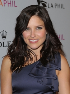 Sophia Bush Long Wavy Hairstyle