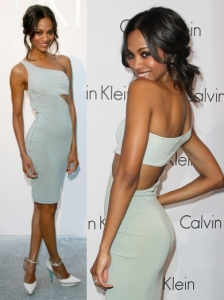Zoe Saldana in Calvin Klein Cutout Dress