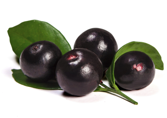 There are hardly any other popular fruits that contain the levels of antioxidants that Acai berries contain, making them one of the healthiest fruits available. Find out the benefits of Acai berry diet.
