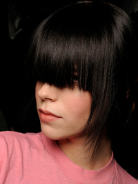 2009 Fall Hairstyles Trends - Runway Hairstyles