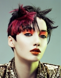 Punk Hairstyles Ideas for Girls