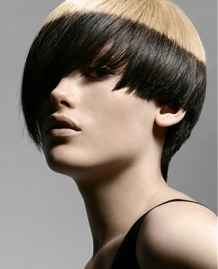 Two Tone Hair Color Hairstyles.