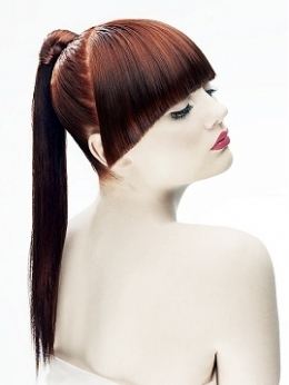 PONYTAIL HAIRSTYLING