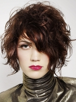 Strange Beauty Tips 2010 Curly Punk Hair Styles Hairstyle Inspiration Daily Dogsangcom