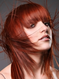 Bold Hair Color Ideas 2011