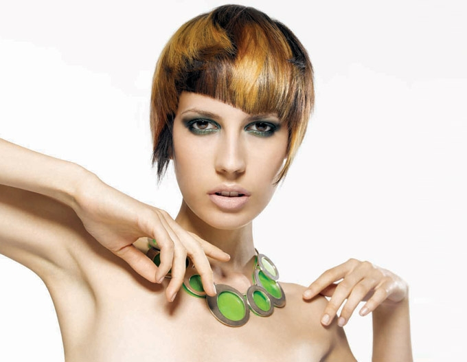 hair color styles 2011. Hot Hair Color Ideas 2011