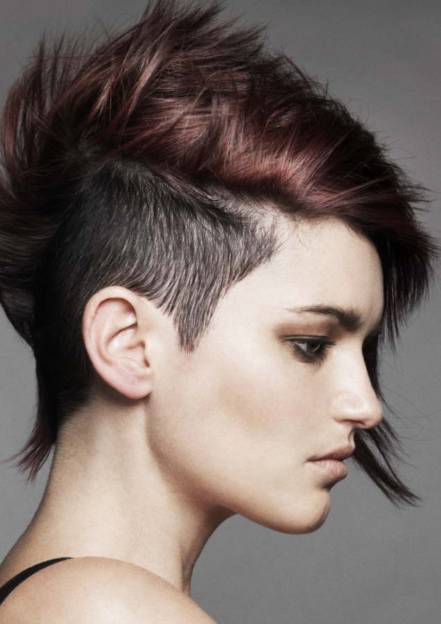 Glam Punk Hair Styles 2011 Makeup Tips And Fashion