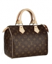 Louis Vuitton Speedy 25 Bags