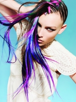http://static.becomegorgeous.com/img/arts/2010/Jan/11/1663/punkhairlongcolors_thumb.jpg