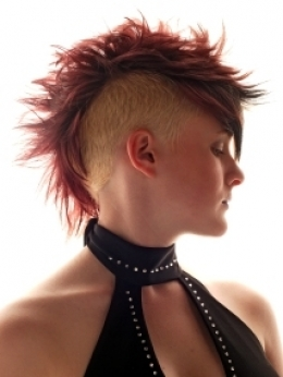 http://static.becomegorgeous.com/img/arts/2010/Jan/11/1663/punkhairstylesinspirationguirl_thumb.jpg