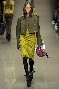 Fall/Winter 2010-2011 Fashion Color Trends
