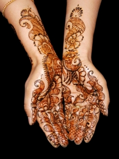 Temporary Henna Tattoo Hands