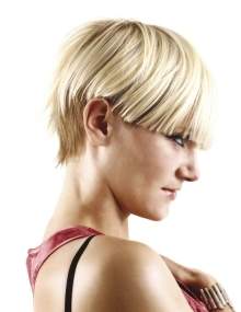 images of black hair styles pixie haircuts for 2010 1895
