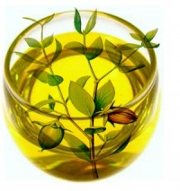 5 Great Ways to Use Jojoba Oil
