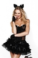 Victoria's Secret Sexy Halloween Costumes for 2010