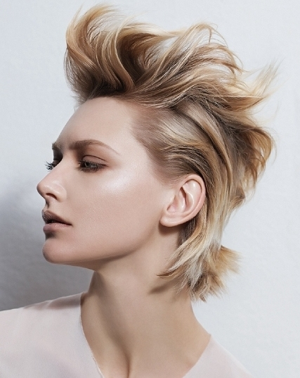 styling ideas for short hair glossy hair styling ideas for hair 7502 | estetica short hair
