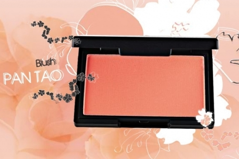 Sleek MakeUp Pan Tao Blusher