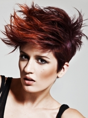 Dark Red Hair With Highlights