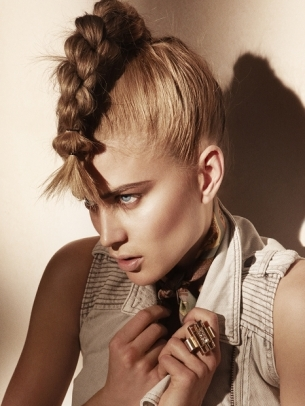 Braided Pony Hairstyle 2012