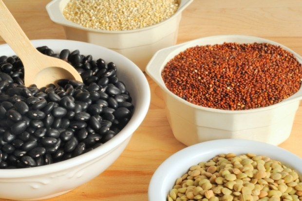 Sources of Protein in the Vegetarian Diet
