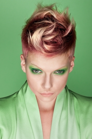 Cool Hair Color Ideas for Winter 2011