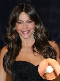Sofia Vergara's Marriage Proposal Video Revealed!