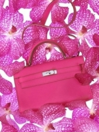Hermès Tiny Kelly and Birkin Bags