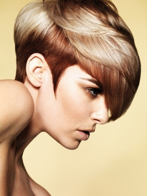 Hair Highlights Idea