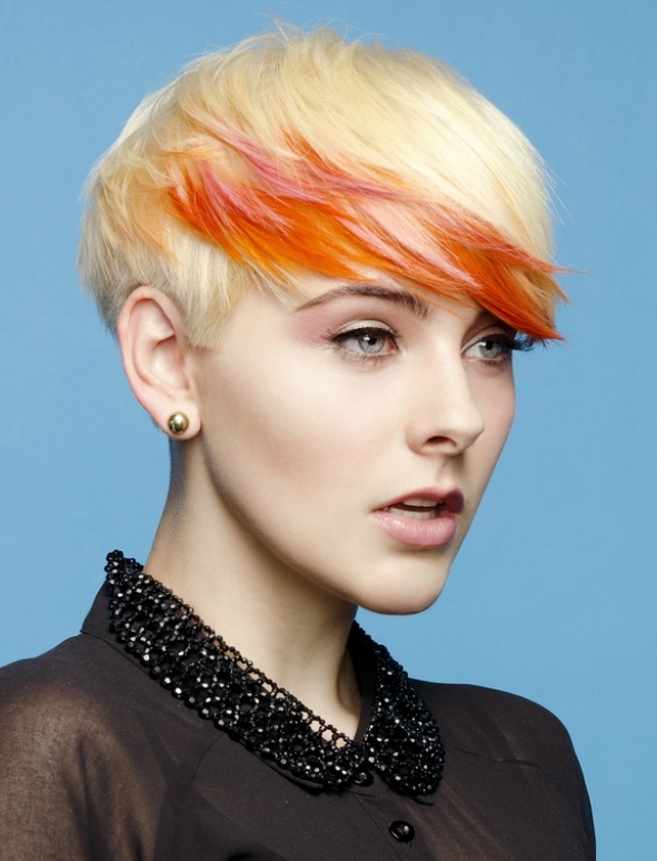 http://static.becomegorgeous.com/img/arts/2012/Mar/27/7235/demi_leight_gardiner_punk_hair_color.jpg