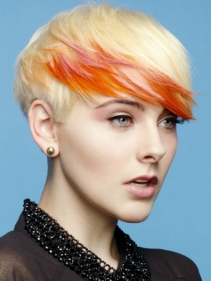 Punk Hair Color Idea