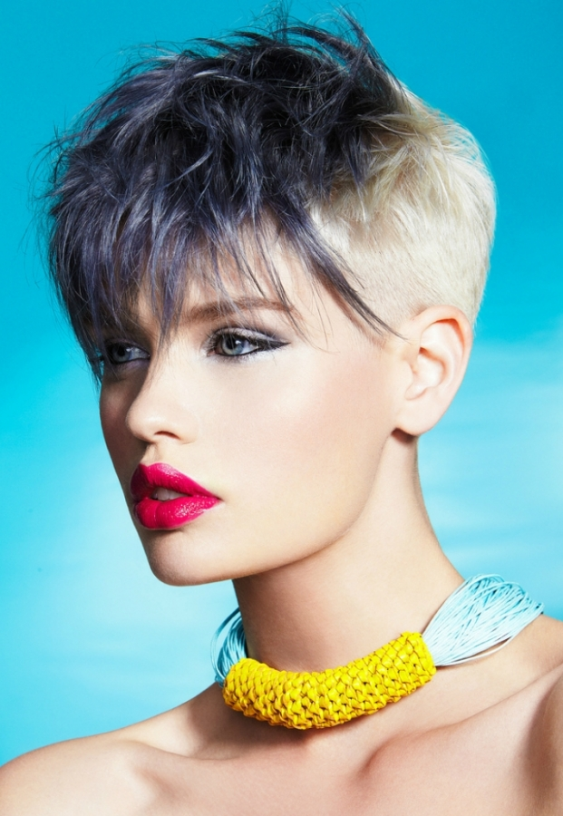 Punk Chic Hair Color Ideas 2012|