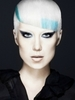 Punk Chic Hair Color Ideas 2012