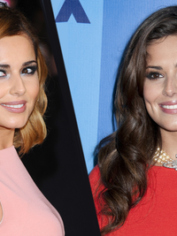 Blonde to Brunette Celebrity Hair Color Makeovers