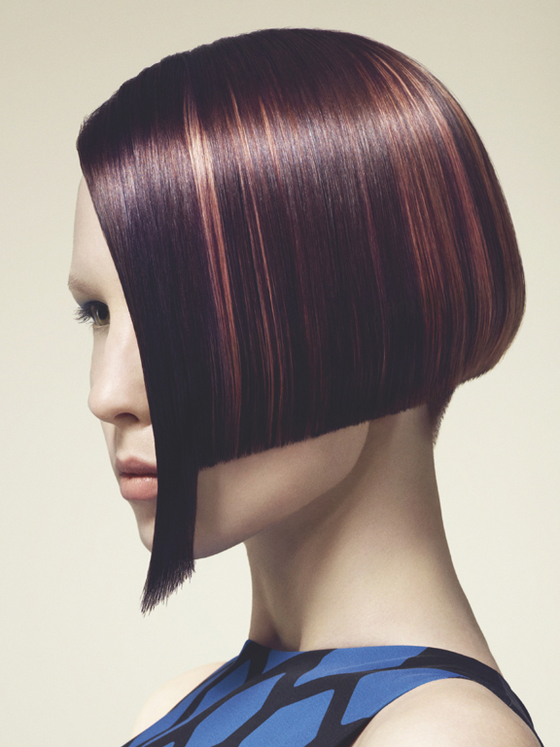 Pictures : Winter Hair Color Ideas 2013 - Plum Brown Hair Color