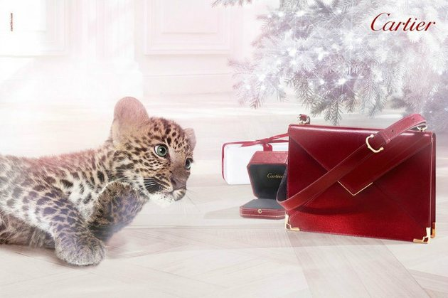 Cartier Winter Tale 2013 Ads