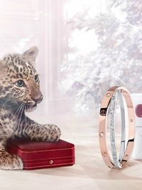 Cartier Winter Tale 2013 Campaign