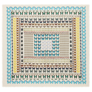 Damien Hirst For Alexander Mc Queen Scarf  (10)