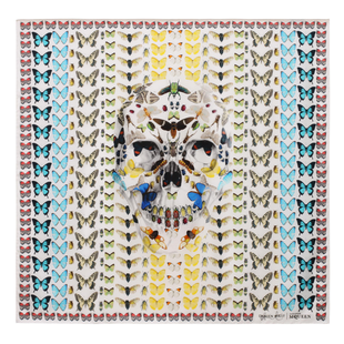 Damien Hirst For Alexander Mc Queen Scarf  (11)
