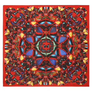 Damien Hirst For Alexander Mc Queen Scarf  (20)