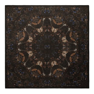 Damien Hirst For Alexander Mc Queen Scarf  (4)