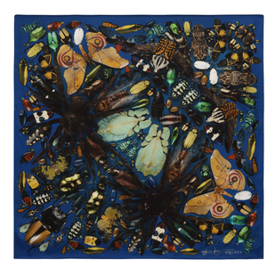 Damien Hirst For Alexander Mc Queen Scarf  (9)