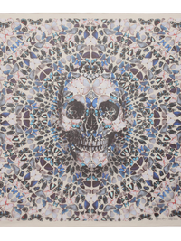 Damien Hirst for Alexander McQueen Scarves Collection